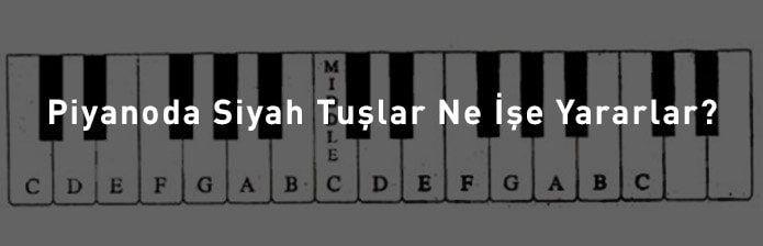 Piyanoda Siyah Tuşlar Ne İşe Yarar?