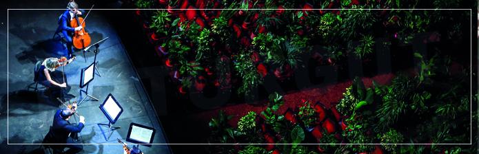Erturgut Sanat Kültür Haberleri - Sanata 2292 Bitki İle Merhaba