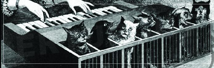 Kedilerden oluşan enstrüman
