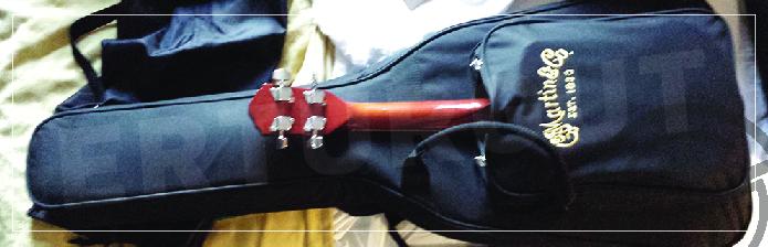 Gitarınızı iyi korumak