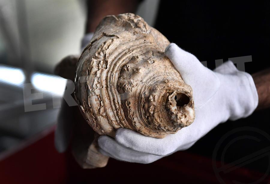 17.000 Yıl Sonra İlk Kez Çalınan Müzik Aleti!