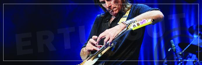 Ne Kadar Sürede Gitar Öğrenilir?