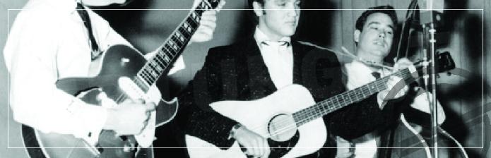 Elvis Presley Gitarı