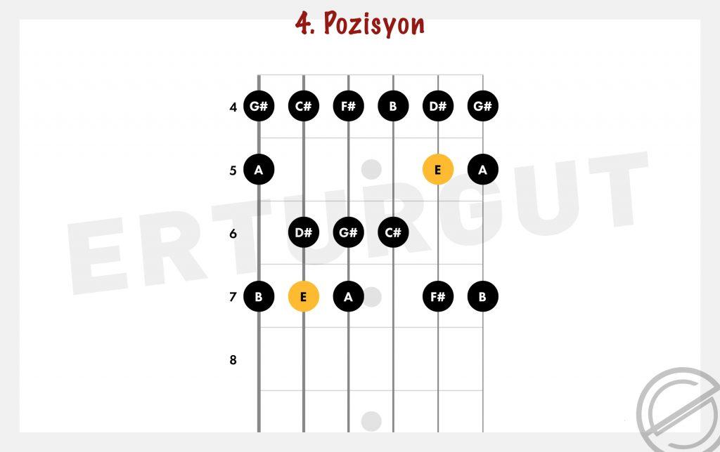 Gitarda Mi Majör Gamı Nasıl Çalınır?